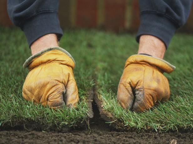 Укладка газона своими руками