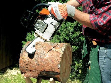скамейка из ствола дерева фото