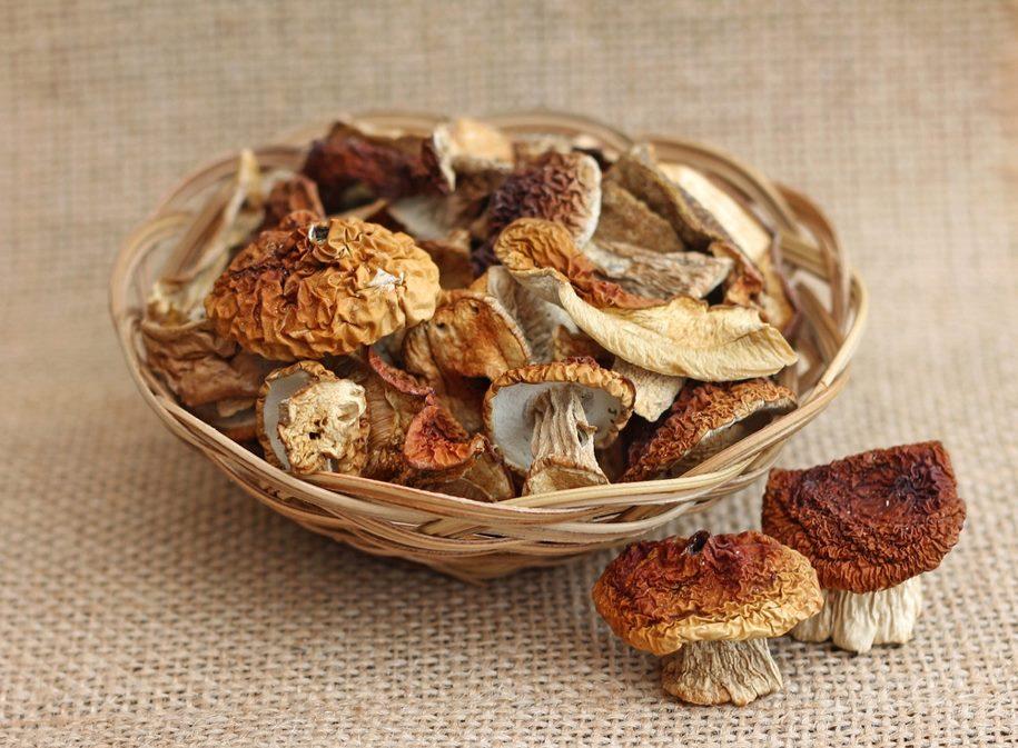 как повысить всхожесть семян с помощью сушеных грибов