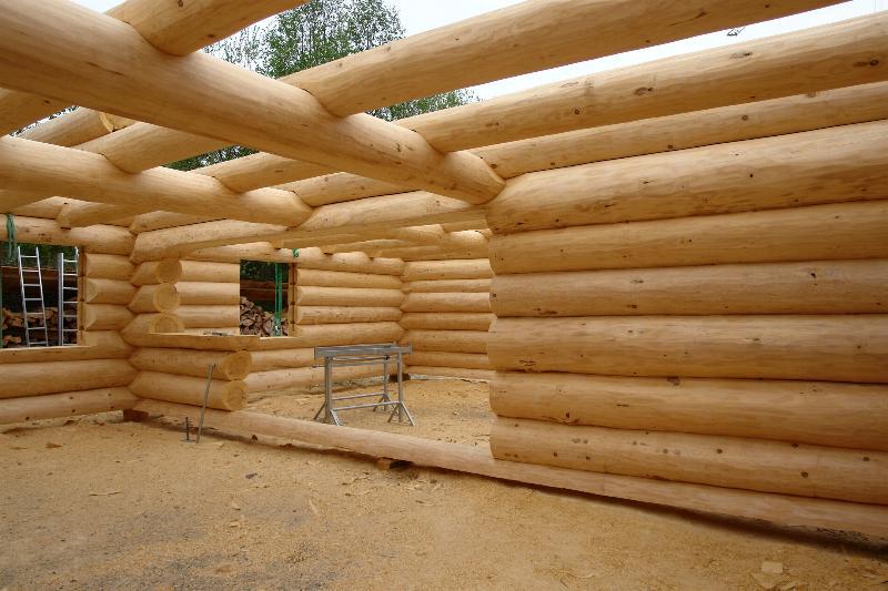 сосновая и еловая древесина