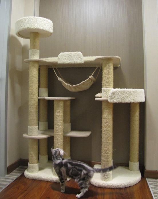 Кошачий игровой комплекс