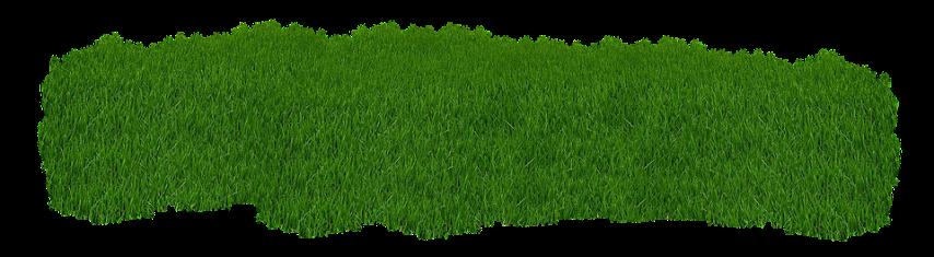 Помощь сторонних организаций при посеве газона