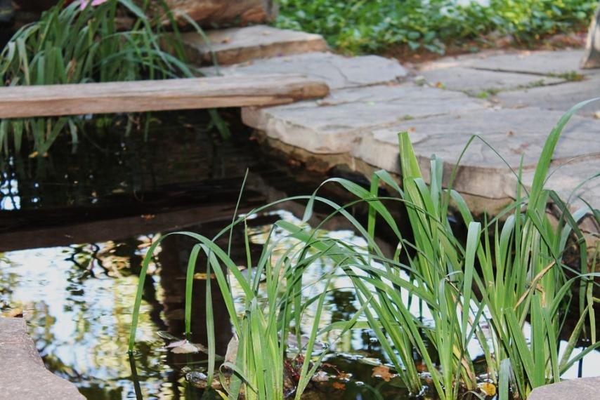Мостик через водоем при создании ландшафтного дизайна