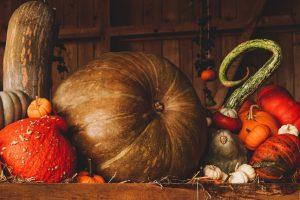 Методы хранения кабачков и тыкв зимой