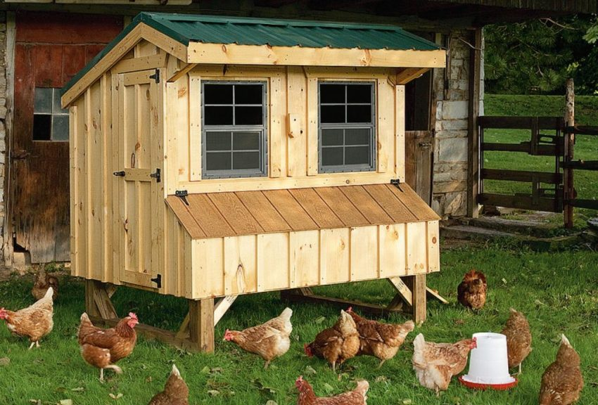 Виды готовых домиков для куриц