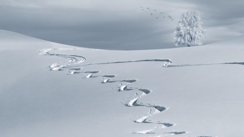 Кем должна производиться уборка снега?