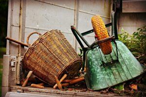 Ошибки при подготовке к зиме: как правильно хранить инвентарь, садовые конструкции