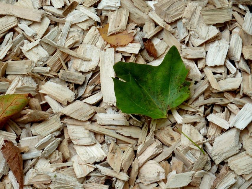 Обогащение почвы с помощью внесения опилок