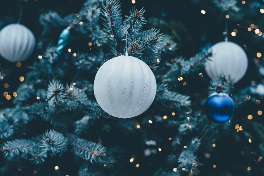 Дополнительные моменты покупки елки для праздников