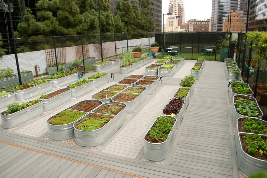 Удобство пользования и минимум трудовых затрат при организации огорода с помощью высоких грядок