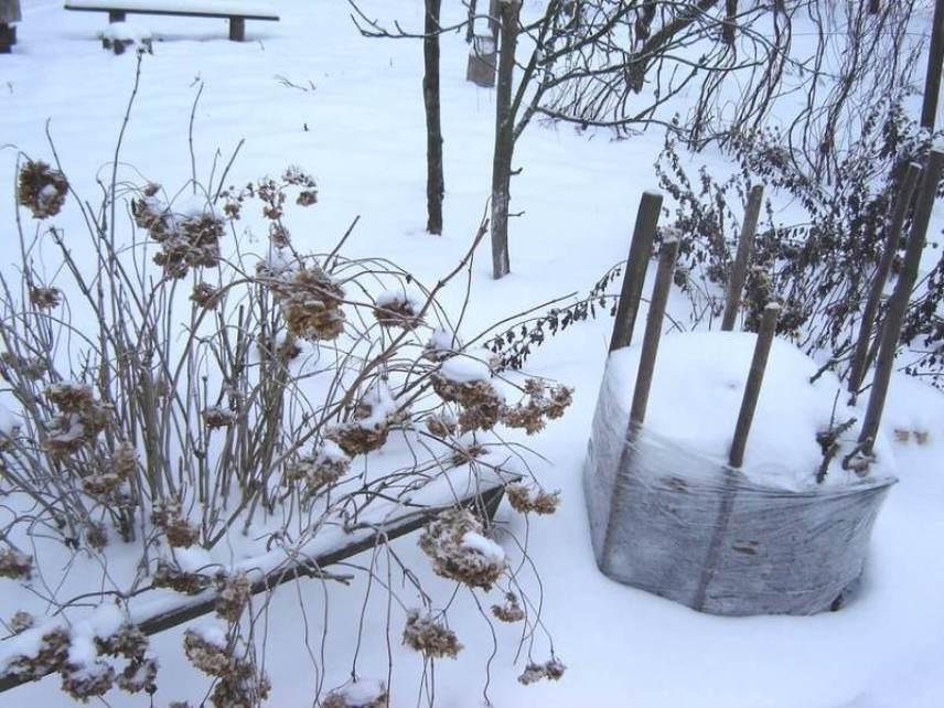 Заслоны для снега