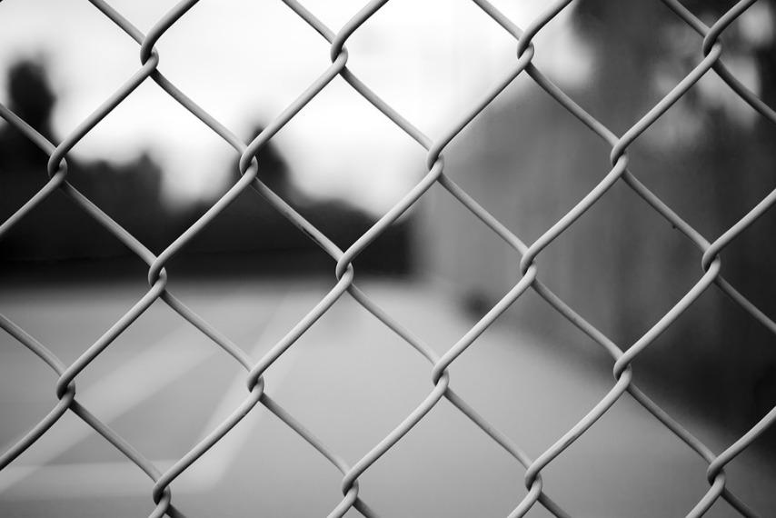 Забор как основание для лазающих растений