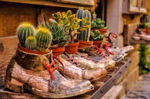 Горшок для комнатных растений