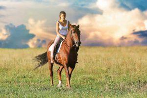 Лошадь около своего дома