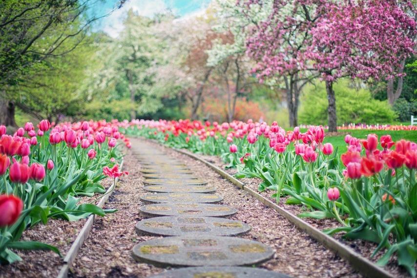 Оформляем сад