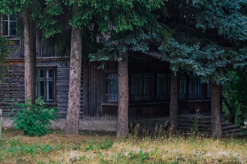 Гниет деревянный дом: что можно предпринять?
