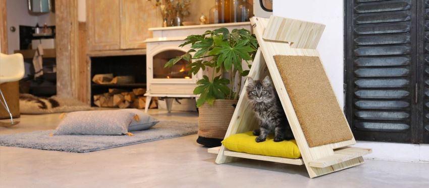Кошачье бунгало