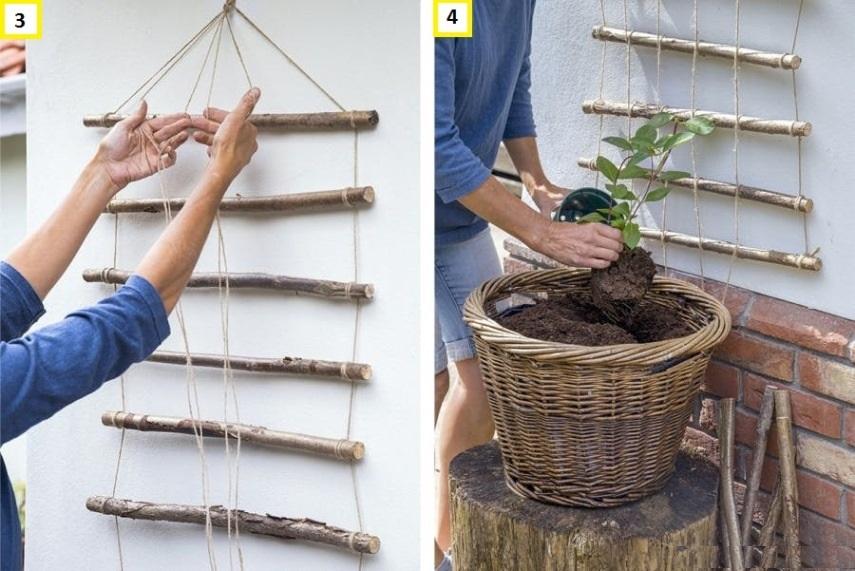 Деревянная решетка для вьющихся растений