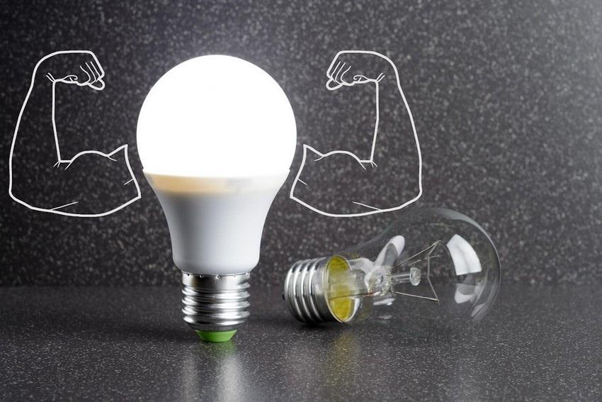 Какие лампочки купить для дома