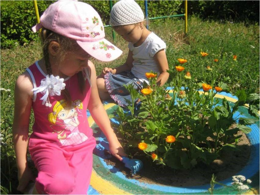 дети цветник