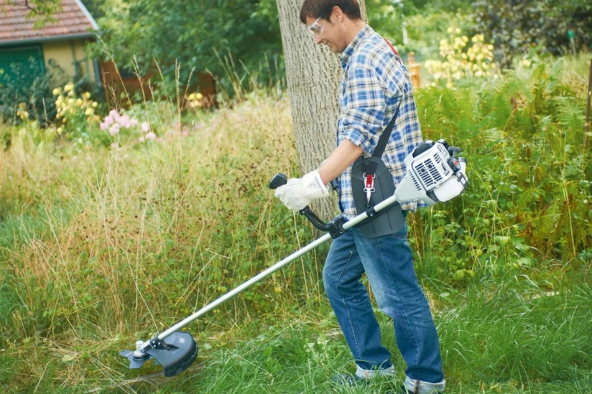Покос травы на участке и вокруг него – утвержденная законом обязанность