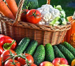 Стимуляторы растений для хорошего урожая
