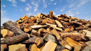 Выбираем дрова