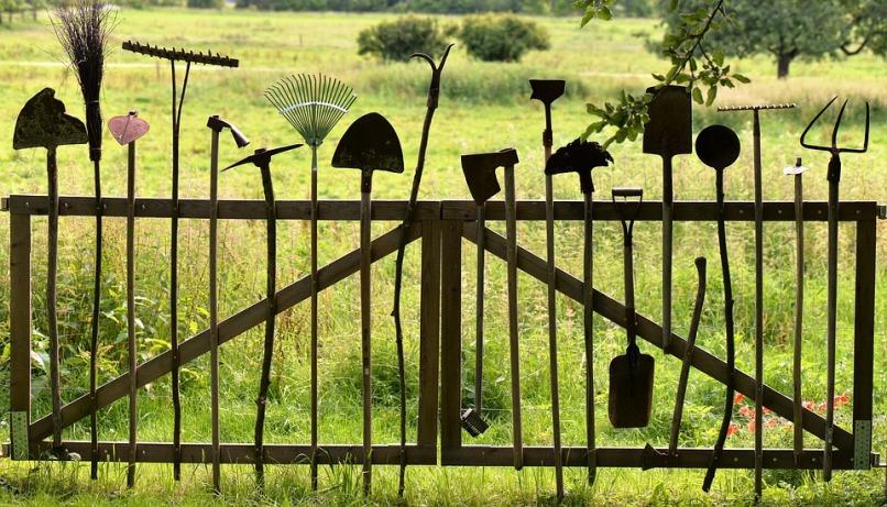 Ветрозащита участка и дома: 5 действенных способов
