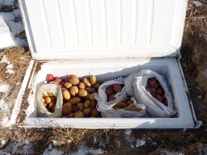 Старый холодильник как погреб