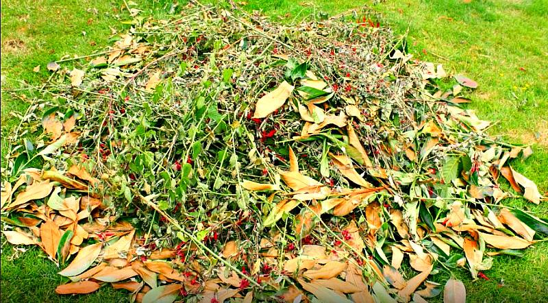 Не жгите растительные остатки