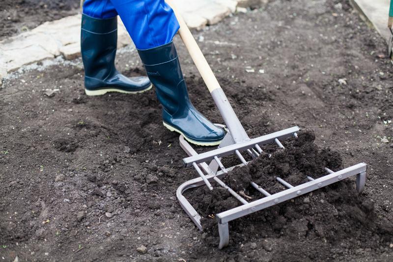 Гибрид лопаты и вил