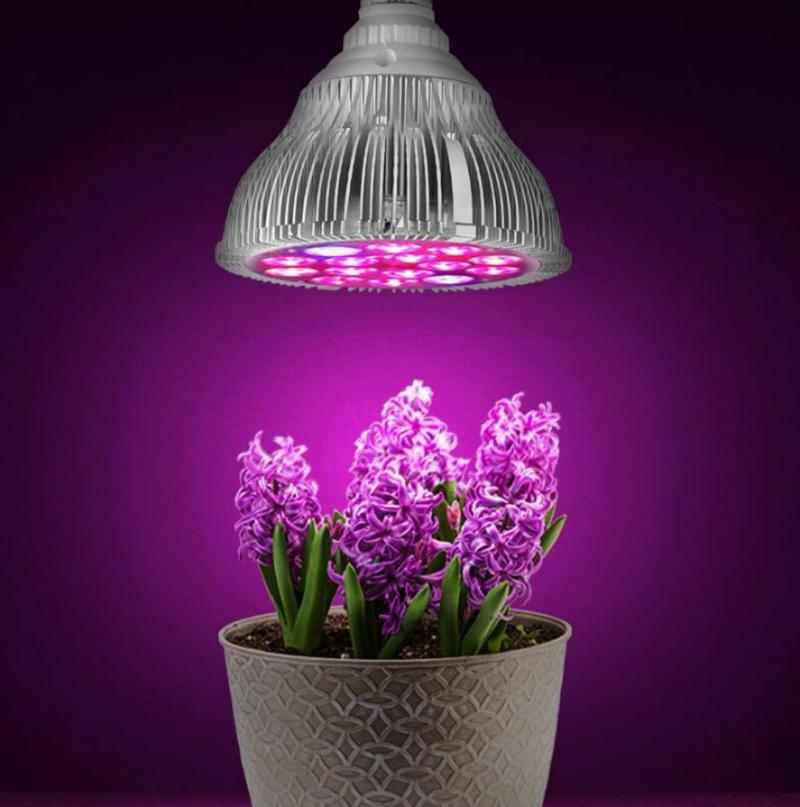 Светодиодная лампа для растений