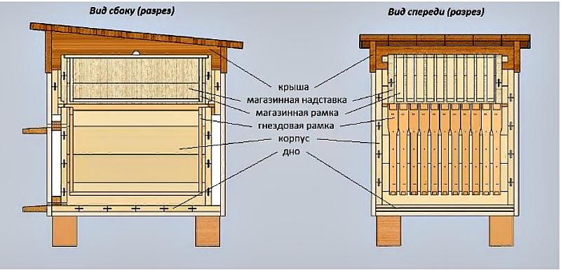 Улей - Конструкция и устройство