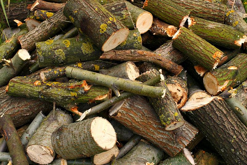Как заготовить дрова