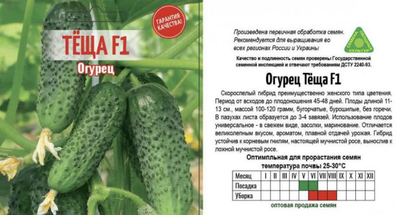 Семена огурцов Тёща