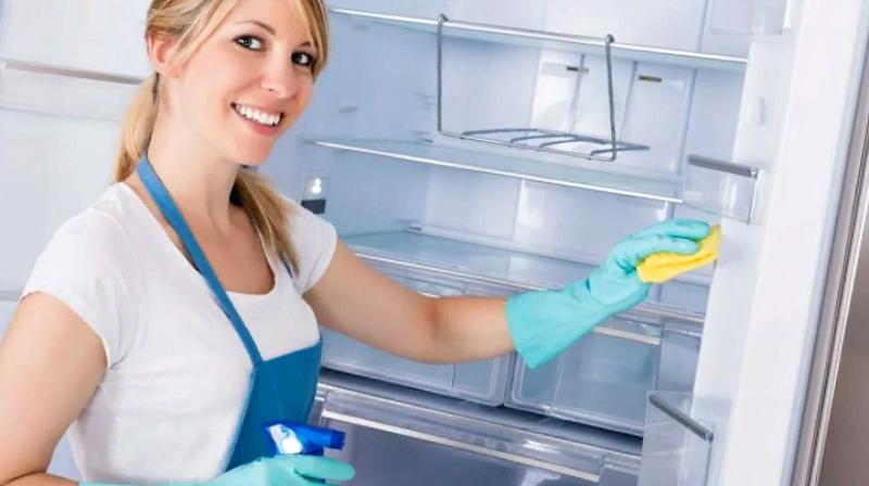 Главное - хорошо вымыть холодильник