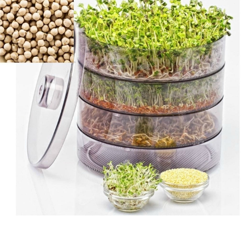 Микрозелень в домашних условиях для здоровья и красоты