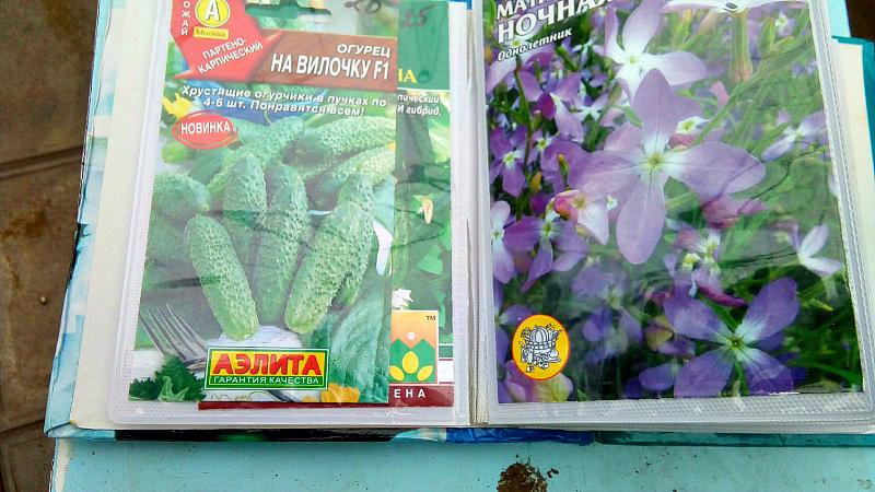 Огородные хитрости - хранить семена в фотоальбоме