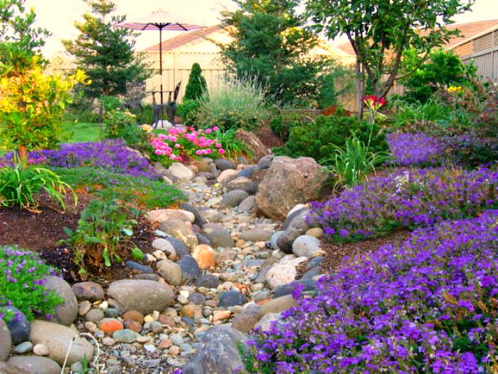 Украсьте берега растениями