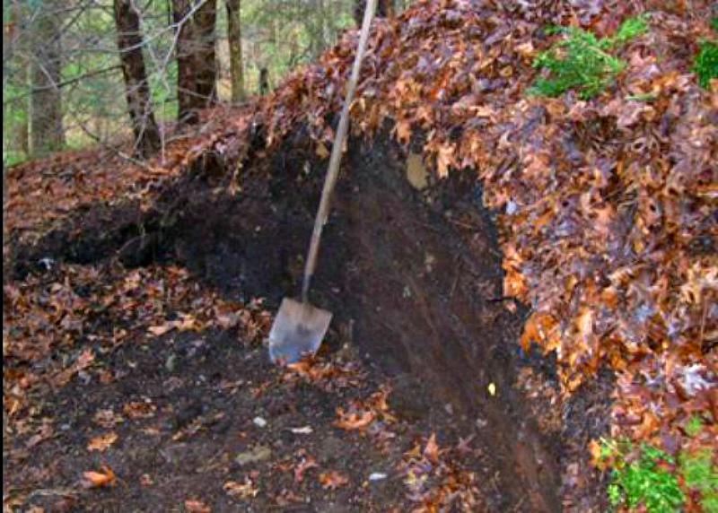 Листовая земля из леса