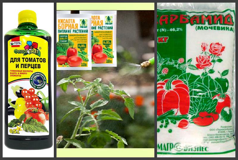 Микроэлементы для подкормки томатов