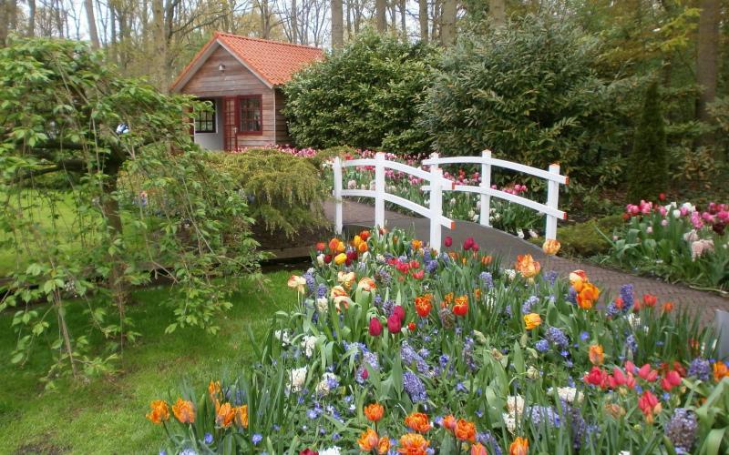 Весна с цветами