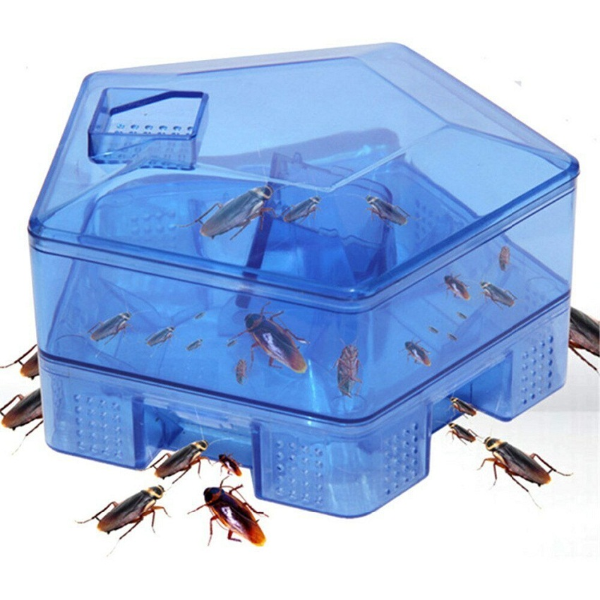 Ловушка для насекомых