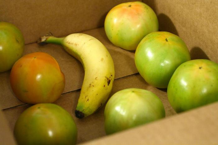 Банан и дозревание томатов