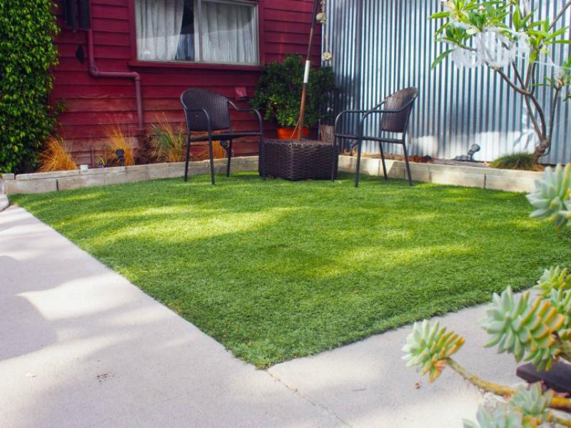 Что сделать в цветнике - подкормить газон