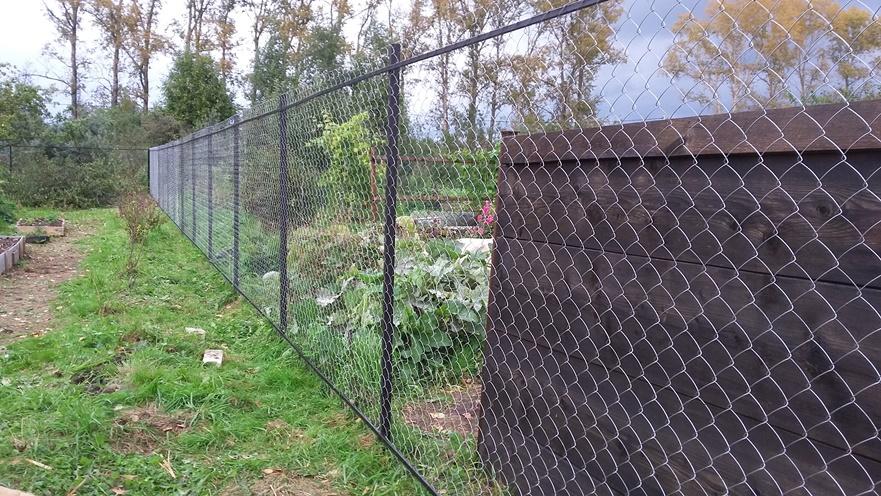 Сетка-рабица и сплошной забор