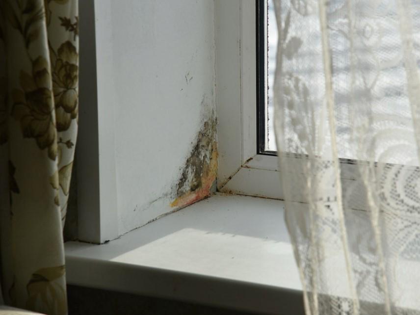 Пластиковые окна, мокнут откосы